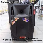 Активная колонка Feiyang A12-31 для уличных выступлений, Купить Kombousilitel.ru, Архив