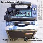 Активная колонка Temeisheng A8-5 для уличных выступлений, Купить Kombousilitel.ru, Архив