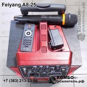 Активная колонка Feiyang A8-25 для уличных выступлений, Купить Kombousilitel.ru, Архив
