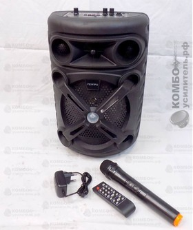 Feiyipu ES 8-01 Портативная колонка Микрофон, USB/ mSD/ BT/ FM/ AUX/ Пульт/ LED/ Мик. вход, Купить Kombousilitel.ru, Активная акустика