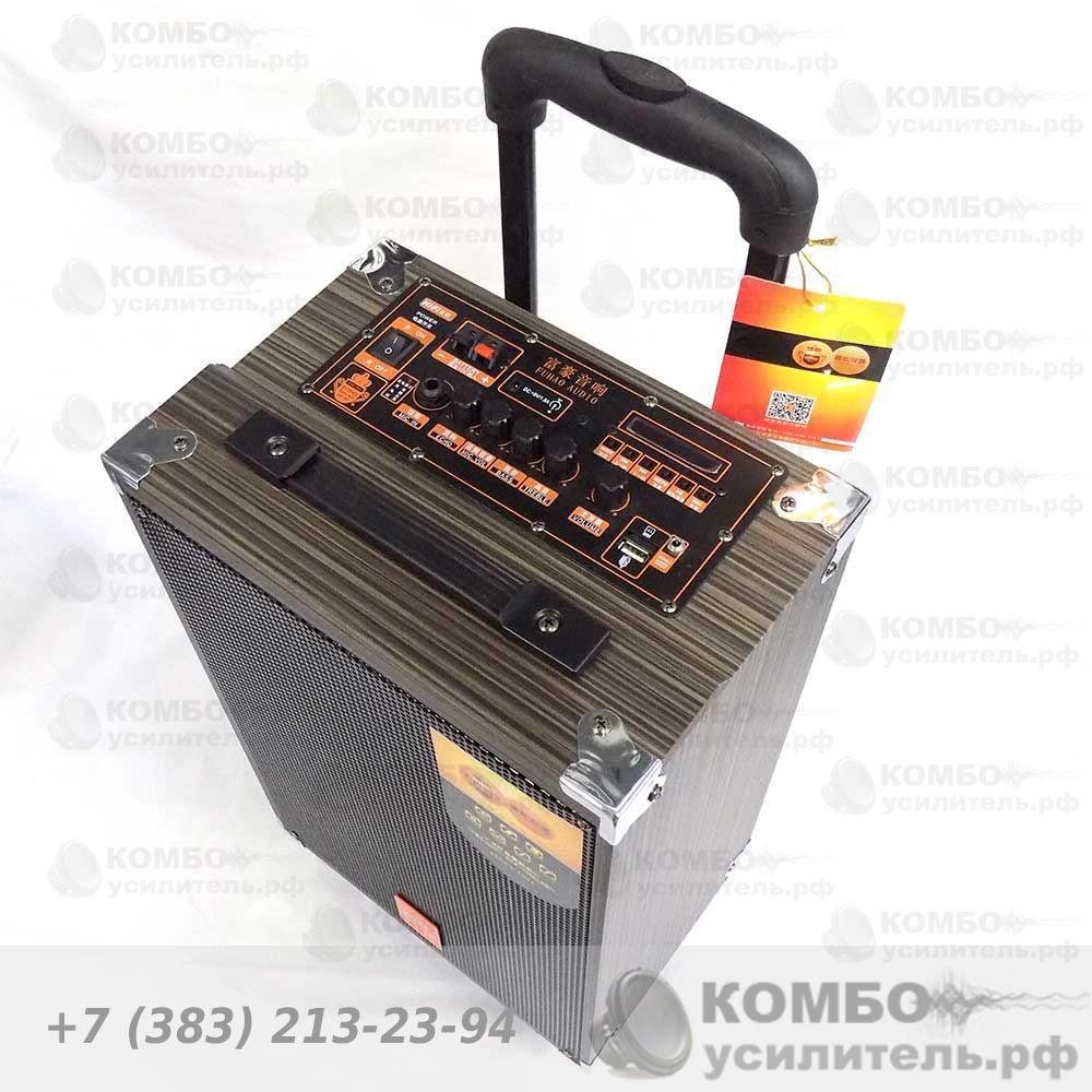 FUHAO Q10, Купить Kombousilitel.ru, Активная акустика (Комбоусилитель)