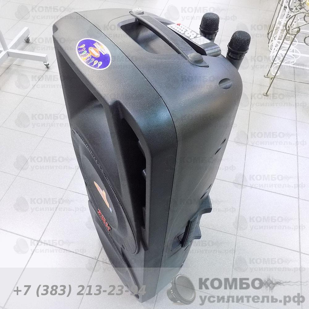 Активная колонка Temeisheng A86 для уличных выступлений, Купить Kombousilitel.ru, Активная акустика (Комбоусилитель)