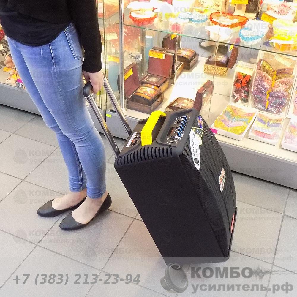 Активная колонка Feiyang QX1014 для уличных выступлений, Купить Kombousilitel.ru, Активная акустика (Комбоусилитель)
